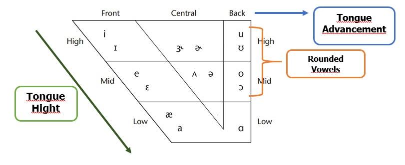 nuevo chart vowels